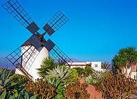 Spanien, Kanarische Inseln, Fuerteventura, Windmuehle bei Cotillo | Spain, Canary Island, Fuerteventura, windmill near Cotillo