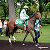 Kawfee Fa Marfha winning The Small Wonder on Owners Day at Delaware Park on 9/13/14
