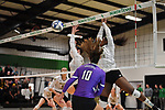 DENTON, TX - NOVEMBER 29:  - Wichita State Volleyball vs Central Arkansas at the Olympic Village in Denton on November 29, 2018 in Denton, Texas. Rick Yeatts Photography/ Manny Flores