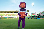 9th January 2018, nib Stadium, Perth, Australia; A League football, Perth Glory versus Melbourne City; George the Perth Glory Gorilla flexes his muscles before the start of the match against Melbourne City