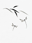 Dragonflies and bamboo leaves artistic oriental style illustration, Japanese Zen Sumi-e ink painting on white rice paper background