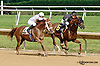 Avvatar winning at Delaware Park racetrack on 6/25/14