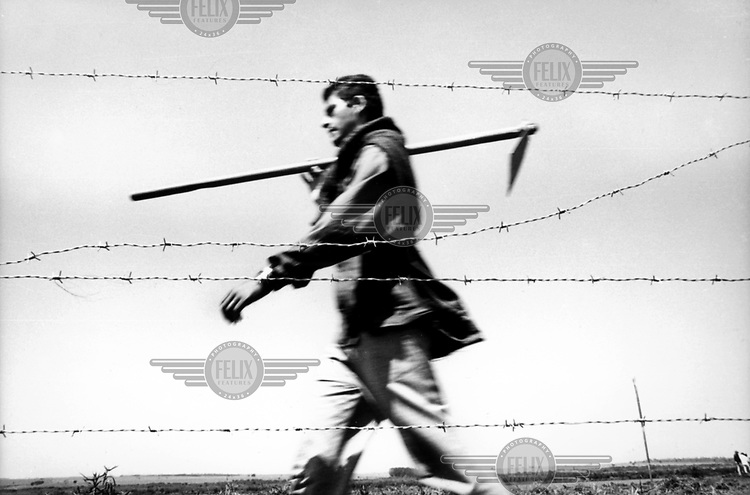 © Paul Smith / Panos Pictures..Fazenda Santa Rita, Paranapanema, BRAZIL..Movimento Sem Terra: land occupation by landless peasants. A man returns from hoeing a field.