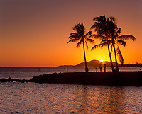Couple Holding Hands, Watching Sunset Between Palm Trees, Honolulu, Oahu, Hawaii, USA.