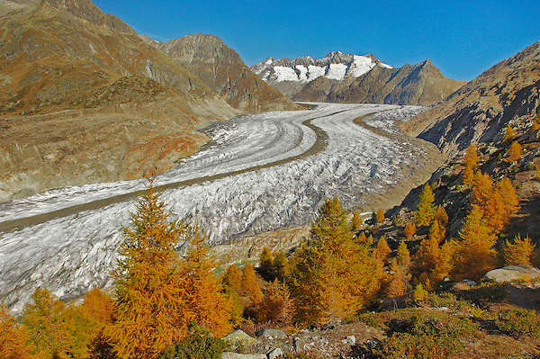 Aletsch glacier in fall, Valais, Switzerland