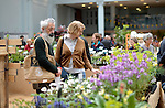 Visitors look at plants for sale an RHS Secret Garden Sunday.