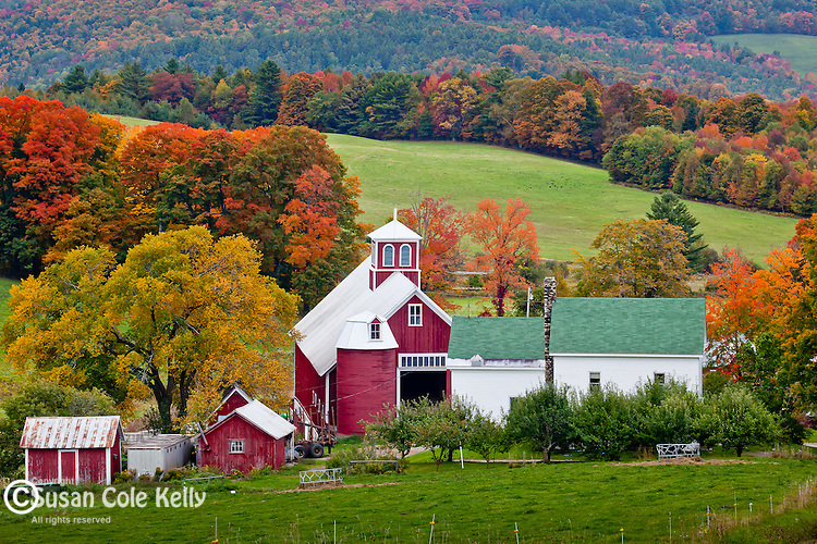 Bogie Mountain Farm in East Ryegate, VT, USA