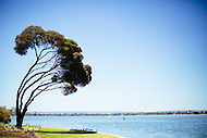 Image Ref: CA394<br /> Location: Perth<br /> Date: 15 Jan 2016
