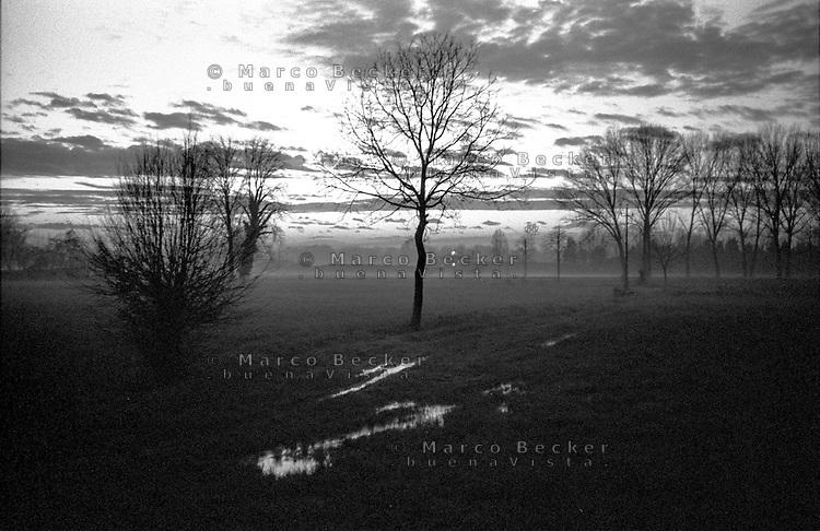 Parco Adda Sud presso Rivolta d'Adda (Cremona). Foschia al tramonto --- Park South Adda near Rivolta d'Adda (Cremona). Haze at sunset