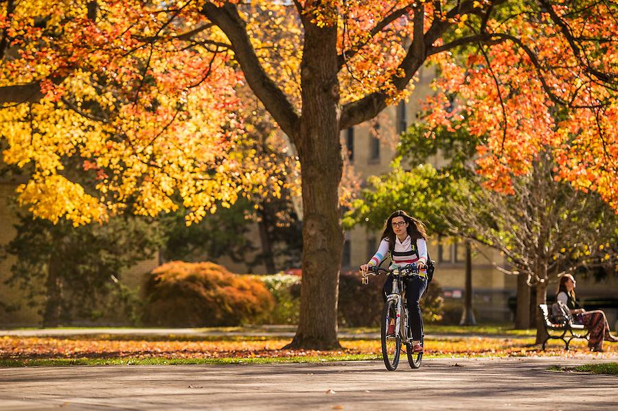Nov. 2, 2015; Fall color on Main Quad, 2015. (Photo by Matt Cashore/University of Notre Dame)