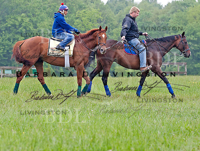 Animal Kingdom.  Fair Hill Training Center - May 17, 2011.  David Nara exercise rider, Dave Rock (assistant trainer) on pony.