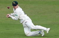 Ben Slater of Nottinghamshire misfields the ball during Nottinghamshire CCC vs Essex CCC, Specsavers County Championship Division 1 Cricket at Trent Bridge on 11th September 2018