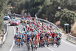 The peloton in action during Stage 8 of the La Vuelta 2018, running 195.1km from Linares to Almaden, Spain. 1st September 2018.<br /> Picture: Unipublic/Photogomezsport | Cyclefile<br /> <br /> <br /> All photos usage must carry mandatory copyright credit (&copy; Cyclefile | Unipublic/Photogomezsport)