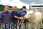 William, James and James Jnr Drumm Castleisland with their bull which they entered at the Kilgarvan agricultural show on Sunday.