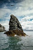 USA, Alaska, Homer, China Poot Bay, Kachemak Bay, scenery seen from the boat ride to Kachemak Bay Wilderness Lodge
