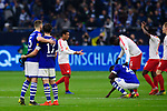 16.03.2019, VELTINS Arena, Gelsenkirchen, Deutschland, GER, 1. FBL, FC Schalke 04 vs. RB Leipzig<br /> <br /> DFL REGULATIONS PROHIBIT ANY USE OF PHOTOGRAPHS AS IMAGE SEQUENCES AND/OR QUASI-VIDEO.<br /> <br /> im Bild Matija Nastasic (#5 Schalke), Benjamin Stambouli (#17 Schalke) enttäuscht / enttaeuscht / traurig nach Niederlage<br /> <br /> Foto © nordphoto / Kurth