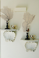 A sea inspired display on white painted shelves