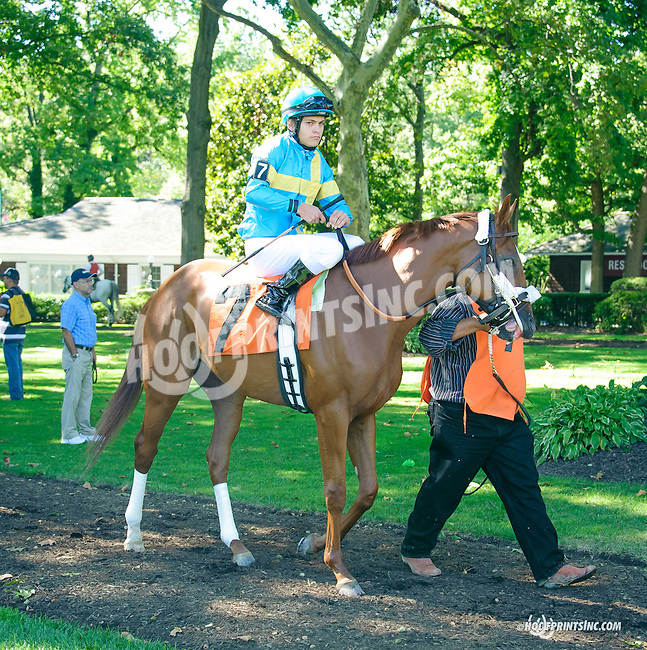 Hard Scuffle before The Longines Gentlemans International Fegentri race at Delaware Park on 9/14/15 - Mr. Tapia Daibark aboard