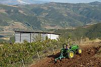 ALBANIA, Berat , farmer Agim Metka and son Engiell with new John Deere Tractor  / ALBANIEN, Berat, Landwirt Agim Metka, sein Sohn Engiell mit neuem John Deere Traktor beim Pfluegen