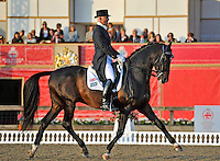 16.05.2014.  Windsor Horse Show London, Daniel Sherriff (GBR) riding Bayford Hall Dallagli  during the CD13* FEI Grand Prix Freestyle to music