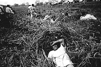 colombia1072 - civilians are caught in the crossfire between government troops and FARC guerrillas, near Puerto Rico, soon after 3 years of peace talks came to a sudden end. Caqueta march 2002<br />