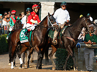 "October 07, 2018 : #6 Sassy Sienna and jockey Shaun Bridgmohan in the 63rd running of The Juddmonte Spinster (Grade 1) $500,000 ""Win and You're In Breeders' Cup Distaff Division"" at Keeneland Race Course on October 07, 2018 in Lexington, KY.  Candice Chavez/ESW/CSM"