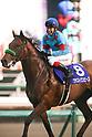 Horse Racing: the 63rd Arima Kinen