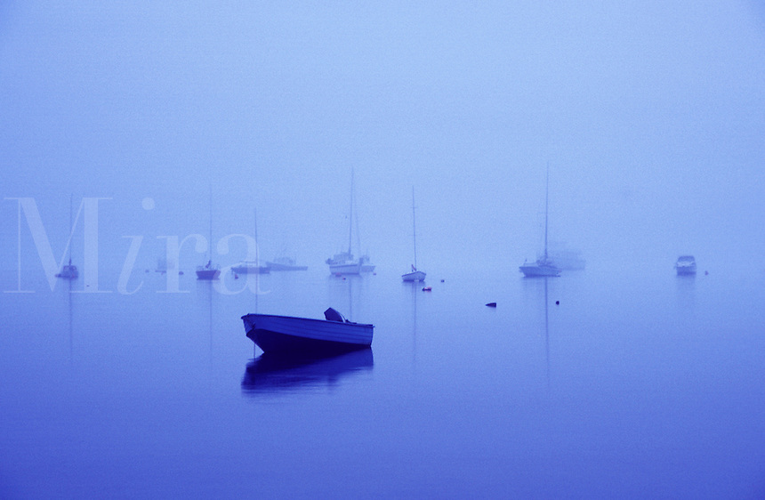 Many boats in early morning fog. Boats in fog. Bay boats in fog.