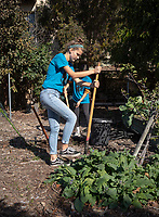 Community Services Unlimited Inc. garden at the Paul Robeson Community Wellness Center in Los Angeles.<br /> Occidental College students, staff and alumni volunteer all over the Los Angeles area as part of MLK Day of Service, organized by the Office of Community Engagement (OCE), on Saturday, Jan. 26, 2019.<br /> In honor of Dr. King's spirit of service and peace, the aim of the MLK Day of Service is to engage Oxy students, staff, faculty, and alumni in community-based projects.<br /> (Photo by Marc Campos, Occidental College Photographer)