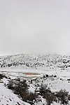 The Golan Heights. Mann Pool at Mann valley