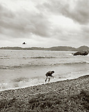 JAPAN, Kyushu, man collecting seaweed, Sea of Japan (B&W)