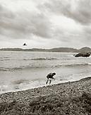 JAPAN, Kyushu, man collecting seaweed, Sea of Japan (B&W)