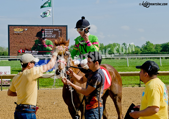 Briar Mojo winning at Delaware Park on 5/20/13 .Alex Cintron's 4th win on the Card & McLean Robertson's 3rd Win on the Card