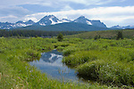 The Sawtooth Mountains of South Central Idaho reflected in a stream in summer.