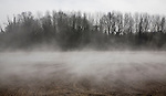 Morning fog clearing from wet fields, Alderton, Suffolk, England