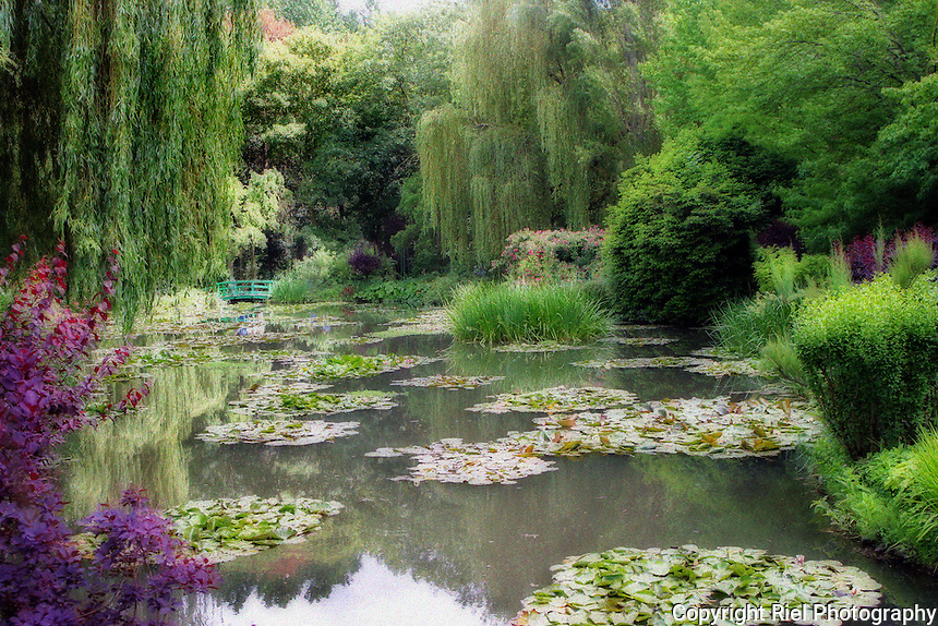 A visit at Claude Monet's property at Giverny include visiting his home & gardens. This is his famed water lily pond where the impressionist created a series of 250 oil painting depicting his flower gardens.