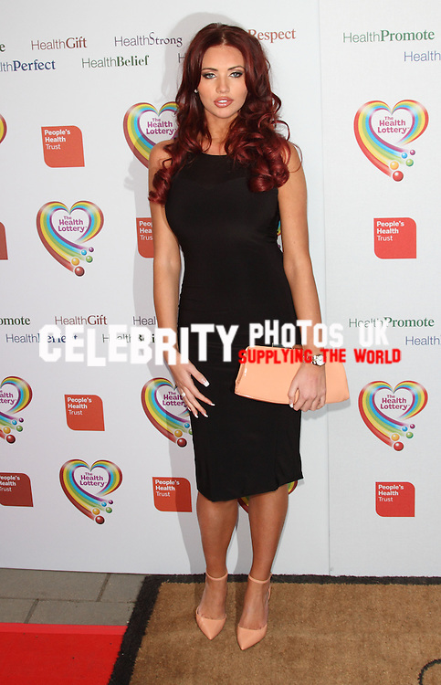 The Health Lottery Fundraising reception at Claridge's Hotel, London - 28th March 2013..