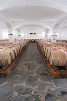 Oak barrel aging and fermentation cellar. J Portugal Ramos Vinhos, Estremoz, Alentejo, Portugal