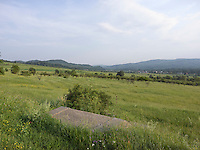 OR_LOCATION_45035