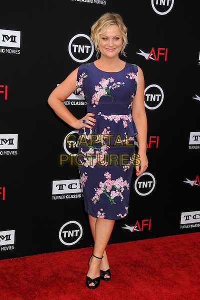 Amy Poehler <br /> 41st Annual AFI Life Achievement Award Honoring Mel Brooks held at the Dolby Theatre, Hollywood, California, USA, 6th June 2013.<br /> full length peplum dress pink floral print ring blue red nails nail varnish polish black peep toe shoes ankle strap <br /> CAP/ADM/BP<br /> &copy;Byron Purvis/AdMedia/Capital Pictures