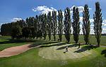 ELST - Hole 14 met populieren, Golfbaan Landgoed Welderen. COPYRIGHT  KOEN SUYK