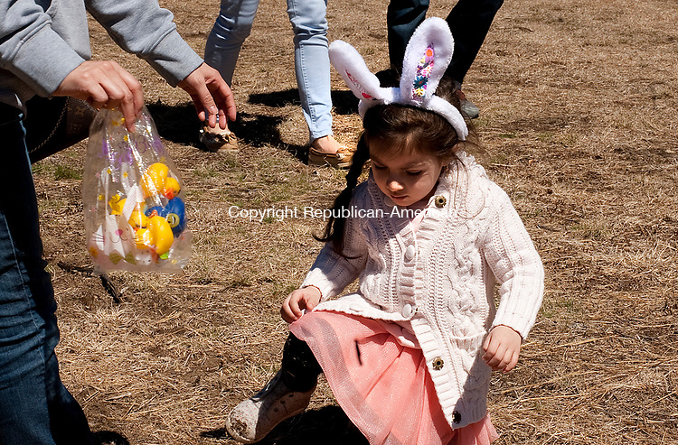 THOMASTON, CT-040917JS04-Fiorella Mejia, 3, of Waterbury, collects ducks during a stop as part of the Naugatuck Railroad's Easter Bunny Express ride from the Thomaston station on Sunday. The event will also be held Saturday, April 15  with rides at 11 a.m., 1 and 3 p.m. <br /> Jim Shannon Republican-American