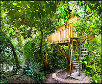 Bmth News (01202 558833)<br /> Pic QualityUnearthed/BNPS<br /> <br /> ****Must use full byline****<br /> <br /> Unlike Tarzan you don't have to swing from the veranda, a spiral staircase is provided.<br />  <br /> Would be Tarzan's are rushing to book up holiday's in a unique treehouse an enterprising farmer has constructed in his Devon wood.<br /> <br /> The plush &pound;200 a night treehouse might be 30ft above the ground but would be Janes will be delighted by all the mod cons including a double bed, a kitchen, a shower and a woodburning stove.<br /> <br /> And the secluded bolthole is one of only a handful of treehouses in the country which can be rented and slept in overnight.<br /> <br /> The treehouse, near Honiton in Devon, is called the Acorn Treehouse because it is nestled within the branches of an oak tree.<br /> <br /> It is rented out through letting agency Quality Unearthed for &pound;196 a night.