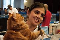 SAO PAULO, SP, 30.08.2014 - EXPOSIÇÃO GATOS - Clube Brasileiro do Gato realiza neste fim de semana a Exposição Internacional de Gatos de Raça, que reúne 360 animais de 23 raças no Club Homs, na Avenida Paulista. (Foto: Kevin David / Brazil Photo Press)