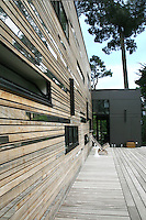 Wooden decking runs the length of the house and seamlessly unifies the house with the outside space