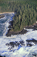 Storm tossed Pacific Ocean waves meet sitka spruce shoreline along the west coast of Vancouver Island at Pacific Rim National Park, British Columbia, Canada.
