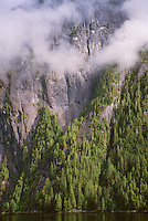 Sheer rock cliffs with clouds and forest at Rudyerd Bay in Misty Fiords National Monument in Tongass National Forest east of Ketchikan, Alaska, AGPix_0697.