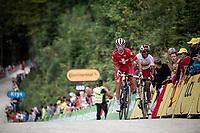 Sebastien Reichenbach (SUI/Groupama - FDJ) & Natnael Berhane (ERI/Cofidis) up the gravel section in the final stretch to the finish line up La Planche des Belles Filles<br /> <br /> Stage 6: Mulhouse to La Planche des Belles Filles (157km)<br /> 106th Tour de France 2019 (2.UWT)<br /> <br /> ©kramon