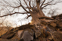 'One in a thousand'<br />