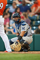 Trenton Thunder catcher Chace Numata (6) during a game against the Richmond Flying Squirrels on May 11, 2018 at The Diamond in Richmond, Virginia.  Richmond defeated Trenton 6-1.  (Mike Janes/Four Seam Images)